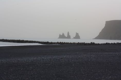 Islande melna pludmale