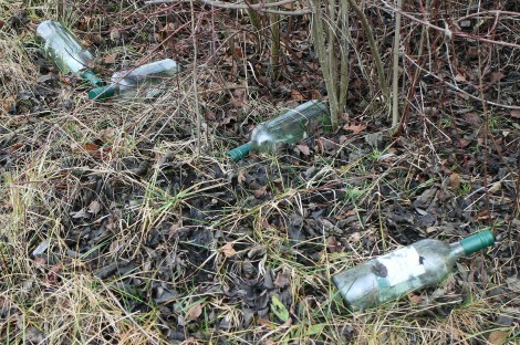nature-grass-lawn-glass-celebration-wildlife-environment-green-bottle-alcohol-celebrate-throw-bottles-litter-waste-garbage-recycling-made-beverages-waste-disposal-disposal-throw-away-society-recycled-glass-on-the-side-of-the-road-994826
